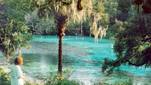 It's an easy drive to Rainbow Springs from your InnHouse vacation home in Orlando.