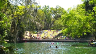 It's an easy drive to Wekiva Springs from your InnHouse vacation home in Orlando.